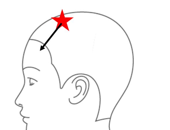 髪がふくらまない・広がらないカットの方法1<頭の骨格のとらえ方>